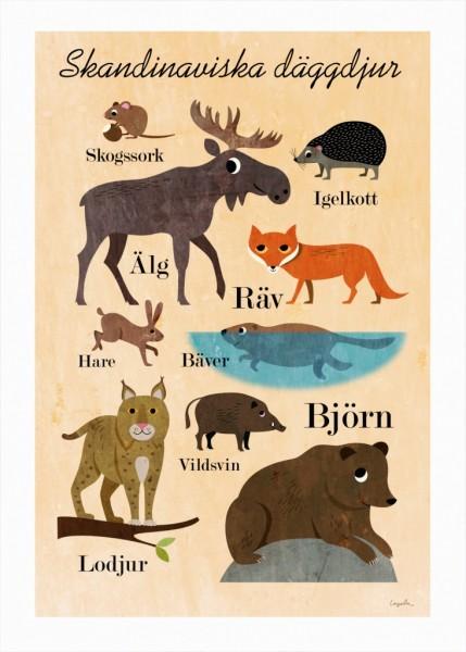 "OMM Design Poster ""Skandinaviska däggdjur"" Ingela P Arrhenius"